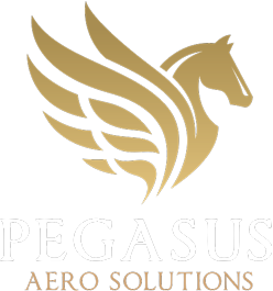 Pegasus Aero Solutions Logo and Company Name